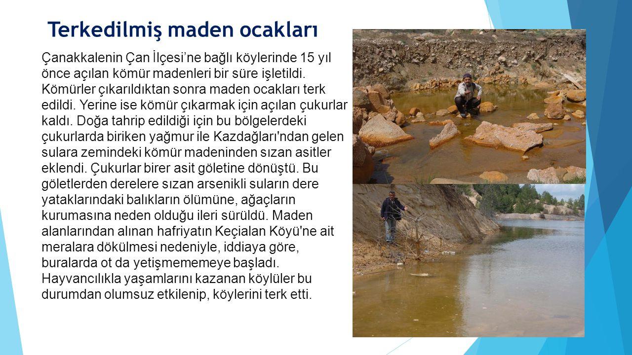 Çanakkalenin Çan İlçesi'ne bağlı köylerinde 15 yıl önce açılan kömür madenleri bir süre işletildi. Kömürler çıkarıldıktan sonra maden ocakları terk ed