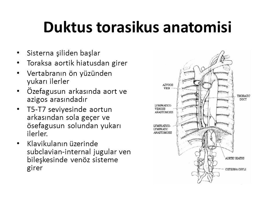 Duktus torasikus anatomisi Sisterna şiliden başlar Toraksa aortik hiatusdan girer Vertabranın ön yüzünden yukarı ilerler Özefagusun arkasında aort ve
