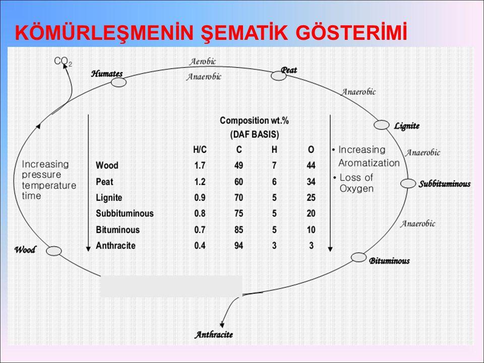 TurbaLinyit garnero101.asu.edu/glg101/Lectures/L37. ppt garnero101.asu.edu/glg101/Lectures/L37. ppt