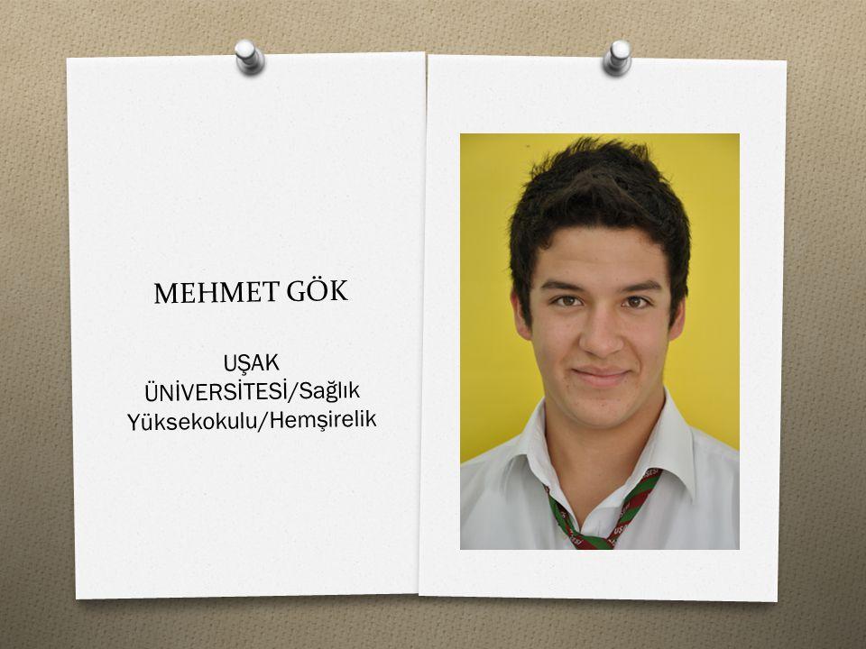 MEHMET GÖK UŞAK ÜNİVERSİTESİ/Sağlık Yüksekokulu/Hemşirelik