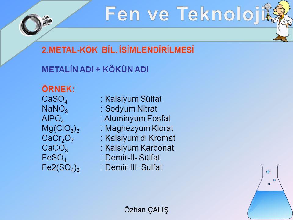 Özhan ÇALIŞ 2.METAL-KÖK BİL.