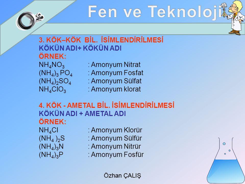 Özhan ÇALIŞ 3.KÖK–KÖK BİL.