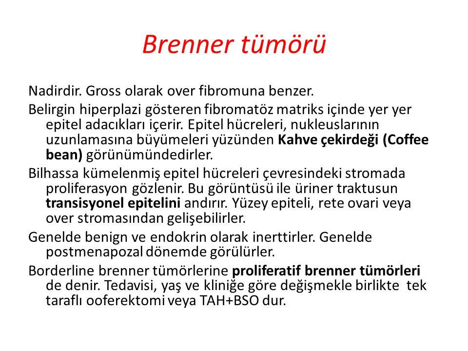 Brenner tümörü Nadirdir. Gross olarak over fibromuna benzer. Belirgin hiperplazi gösteren fibromatöz matriks içinde yer yer epitel adacıkları içerir.