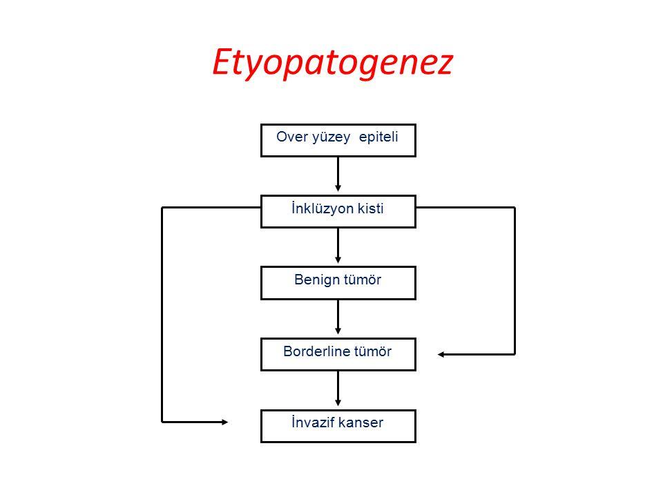 Etyopatogenez Over yüzey epiteli İnklüzyon kisti Benign tümör Borderline tümör İnvazif kanser