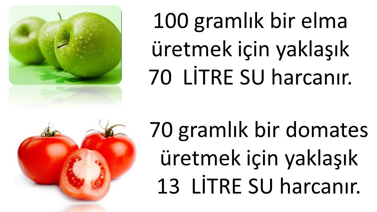 70 gramlık bir domates üretmek için yaklaşık 13 LİTRE SU harcanır. 100 gramlık bir elma üretmek için yaklaşık 70 LİTRE SU harcanır.