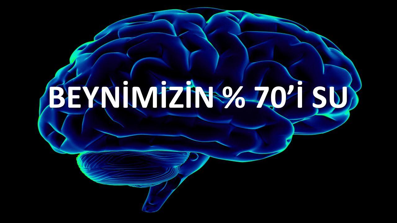 BEYNİMİZİN % 70'İ SU