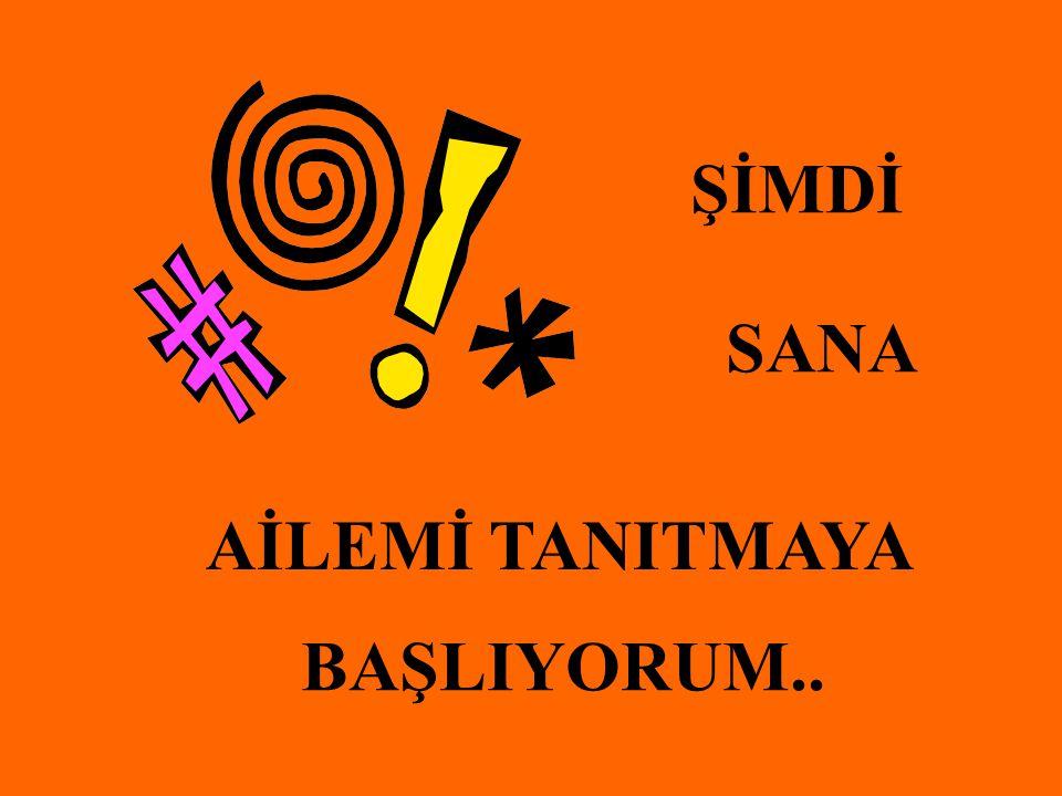 ŞİMDİ SANA AİLEMİ TANITMAYA BAŞLIYORUM..