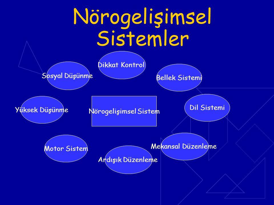 Nörogelişimsel Sistemler Nörogelişimsel Sistem Sosyal Düşünme Yüksek Düşünme Motor Sistem Ardışık Düzenleme Dikkat Kontrol Bellek Sistemi Dil Sistemi