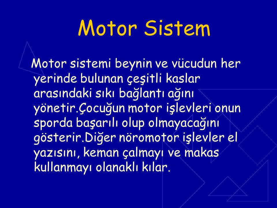Motor Sistem Motor sistemi beynin ve vücudun her yerinde bulunan çeşitli kaslar arasındaki sıkı bağlantı ağını yönetir.Çocuğun motor işlevleri onun sp