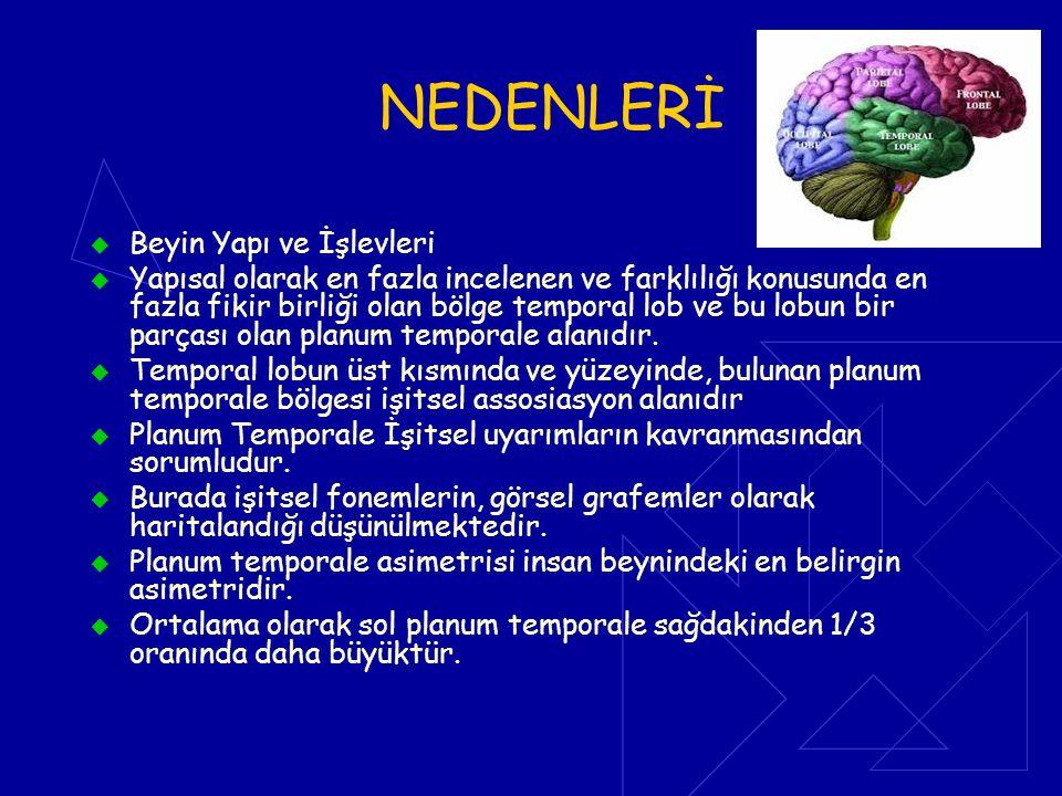 NEDENLERİ  Beyin Yapı ve İşlevleri  Yapısal olarak en fazla incelenen ve farklılığı konusunda en fazla fikir birliği olan bölge temporal lob ve bu l