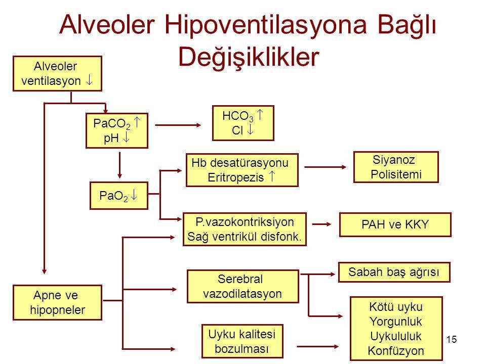 15 Alveoler Hipoventilasyona Bağlı Değişiklikler Alveoler ventilasyon  Apne ve hipopneler PaCO 2  pH  PaO 2  HCO 3  Cl  Hb desatürasyonu Eritrop