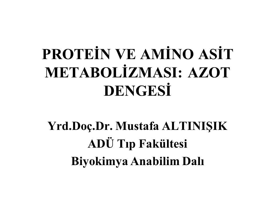 PROTEİN VE AMİNO ASİT METABOLİZMASI: AZOT DENGESİ Yrd.Doç.Dr. Mustafa ALTINIŞIK ADÜ Tıp Fakültesi Biyokimya Anabilim Dalı