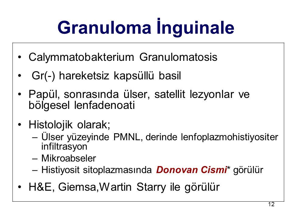 12 Granuloma İnguinale Calymmatobakterium Granulomatosis Gr(-) hareketsiz kapsüllü basil Papül, sonrasında ülser, satellit lezyonlar ve bölgesel lenfa