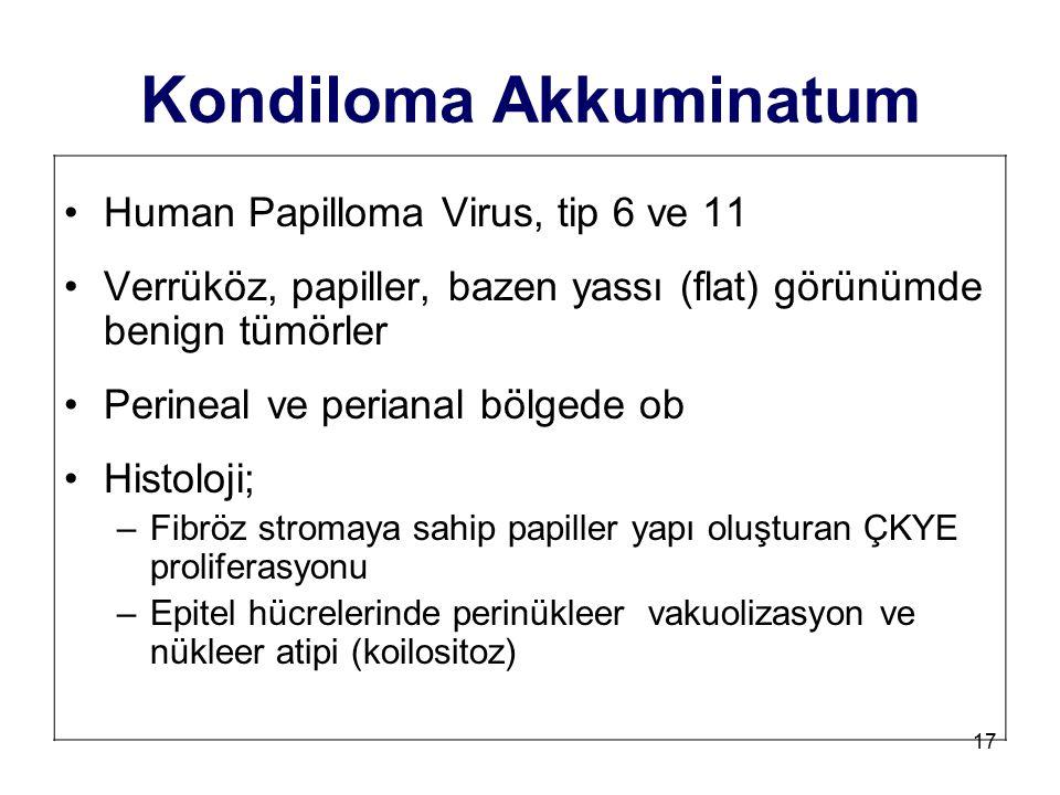 17 Kondiloma Akkuminatum Human Papilloma Virus, tip 6 ve 11 Verrüköz, papiller, bazen yassı (flat) görünümde benign tümörler Perineal ve perianal bölg