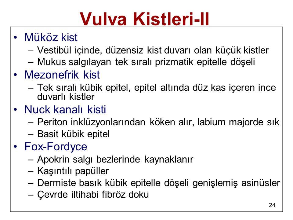 24 Vulva Kistleri-II Müköz kist –Vestibül içinde, düzensiz kist duvarı olan küçük kistler –Mukus salgılayan tek sıralı prizmatik epitelle döşeli Mezon