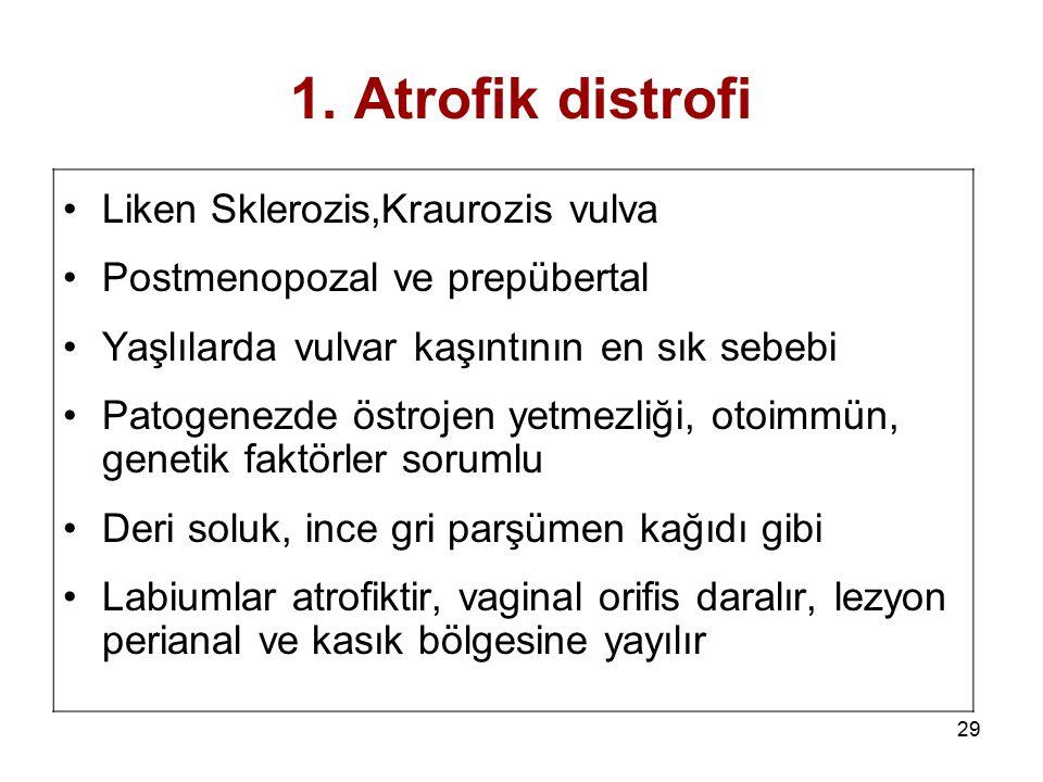 29 1. Atrofik distrofi Liken Sklerozis,Kraurozis vulva Postmenopozal ve prepübertal Yaşlılarda vulvar kaşıntının en sık sebebi Patogenezde östrojen ye
