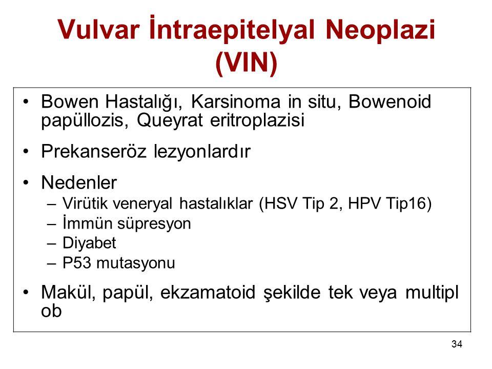 34 Vulvar İntraepitelyal Neoplazi (VIN) Bowen Hastalığı, Karsinoma in situ, Bowenoid papüllozis, Queyrat eritroplazisi Prekanseröz lezyonlardır Nedenl