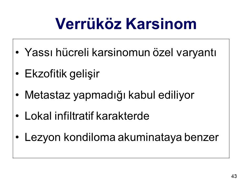 43 Verrüköz Karsinom Yassı hücreli karsinomun özel varyantı Ekzofitik gelişir Metastaz yapmadığı kabul ediliyor Lokal infiltratif karakterde Lezyon ko