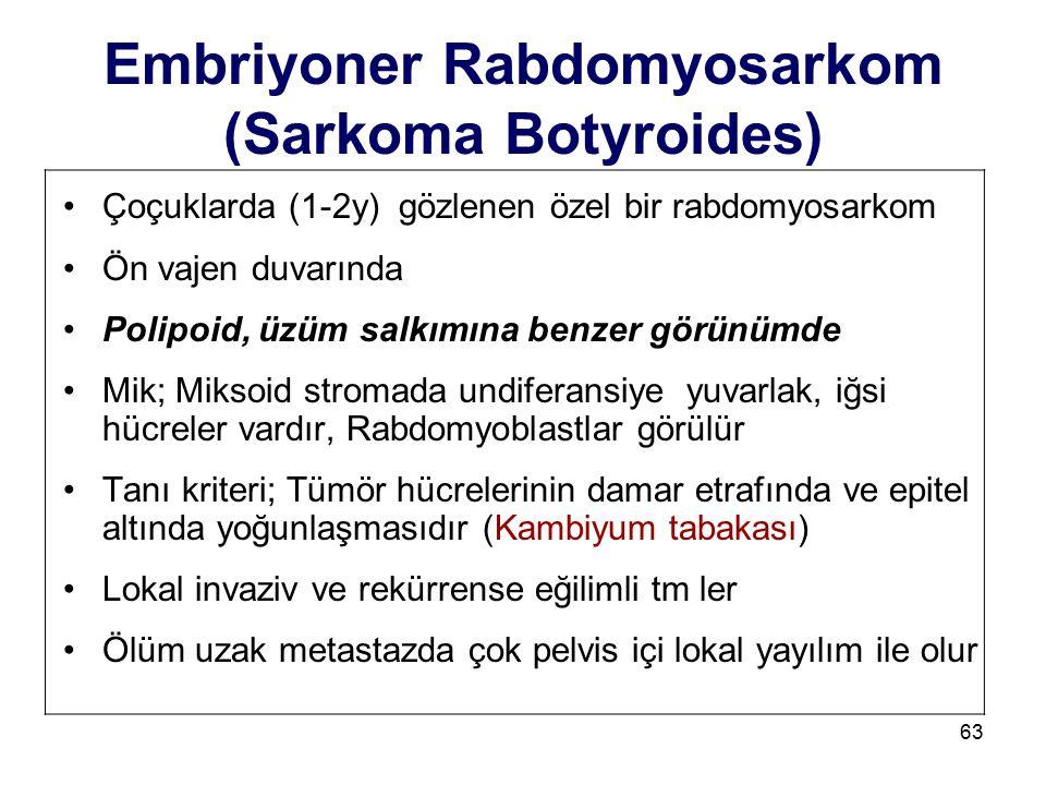 63 Embriyoner Rabdomyosarkom (Sarkoma Botyroides) Çoçuklarda (1-2y) gözlenen özel bir rabdomyosarkom Ön vajen duvarında Polipoid, üzüm salkımına benze
