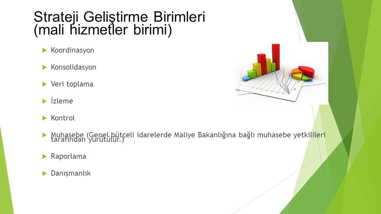 Strateji Geliştirme Birimleri (mali hizmetler birimi)  Koordinasyon  Konsolidasyon  Veri toplama  İzleme  Kontrol  Muhasebe (Genel bütçeli idare