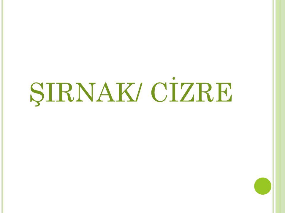 ŞIRNAK/ CİZRE
