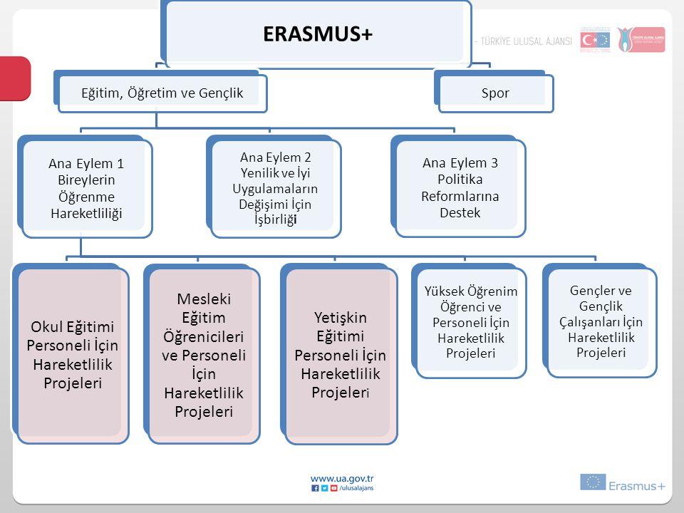 ERASMUS+ Eğitim, Öğretim ve Gençlik Ana Eylem 1 Bireylerin Öğrenme Hareketliliği Yüksek Öğrenim Öğrenci ve Personeli İçin Hareketlilik Projeleri Mesle
