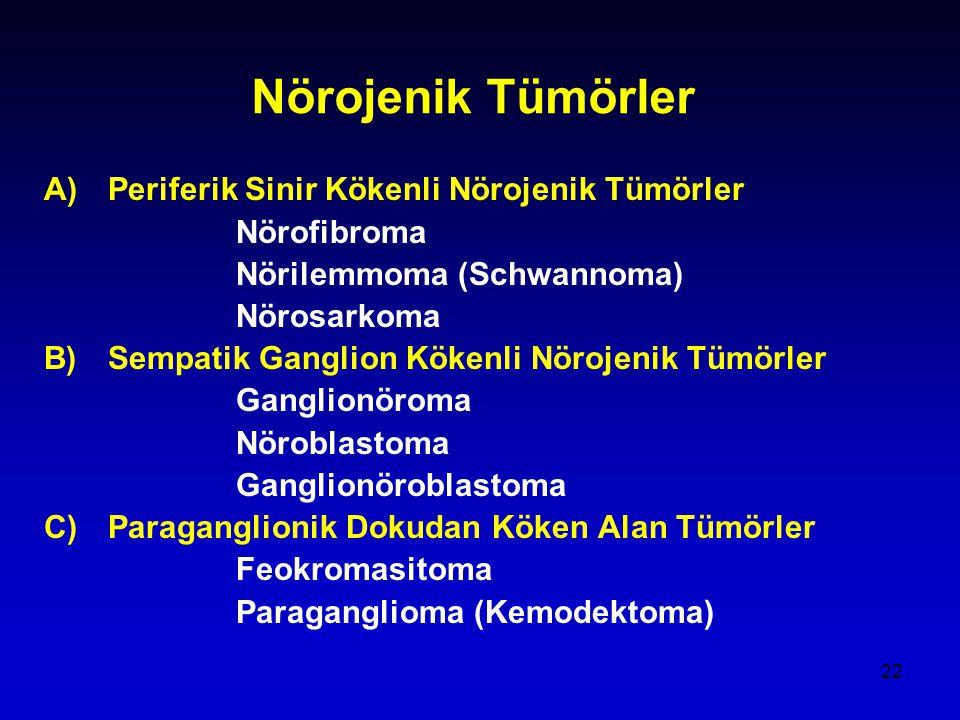 22 Nörojenik Tümörler A)Periferik Sinir Kökenli Nörojenik Tümörler Nörofibroma Nörilemmoma (Schwannoma) Nörosarkoma B)Sempatik Ganglion Kökenli Nörojenik Tümörler Ganglionöroma Nöroblastoma Ganglionöroblastoma C)Paraganglionik Dokudan Köken Alan Tümörler Feokromasitoma Paraganglioma (Kemodektoma)