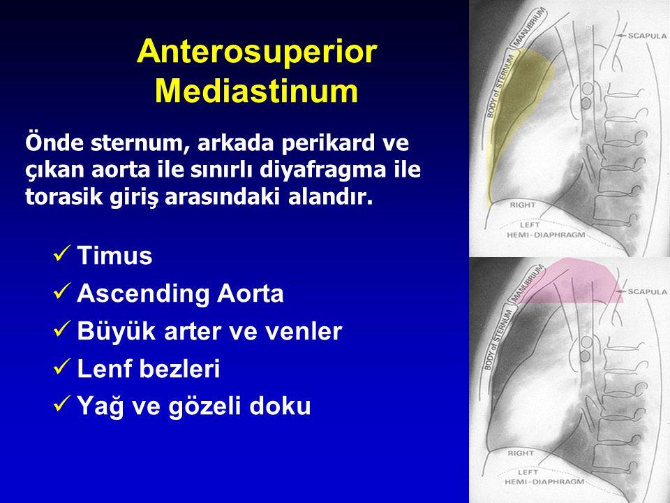 4 Anterosuperior Mediastinum Timus Ascending Aorta Büyük arter ve venler Lenf bezleri Yağ ve gözeli doku Önde sternum, arkada perikard ve çıkan aorta ile sınırlı diyafragma ile torasik giriş arasındaki alandır.