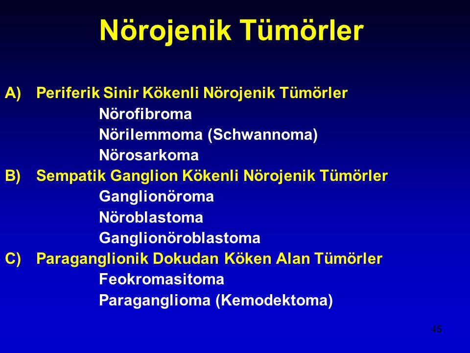 45 Nörojenik Tümörler A)Periferik Sinir Kökenli Nörojenik Tümörler Nörofibroma Nörilemmoma (Schwannoma) Nörosarkoma B)Sempatik Ganglion Kökenli Nörojenik Tümörler Ganglionöroma Nöroblastoma Ganglionöroblastoma C)Paraganglionik Dokudan Köken Alan Tümörler Feokromasitoma Paraganglioma (Kemodektoma)