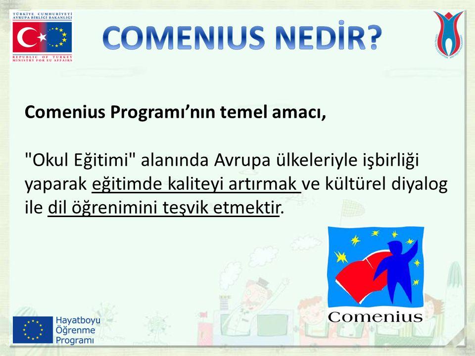 Comenius Programı'nın temel amacı,