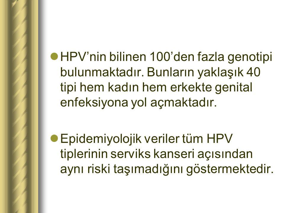 HPV'nin bilinen 100'den fazla genotipi bulunmaktadır. Bunların yaklaşık 40 tipi hem kadın hem erkekte genital enfeksiyona yol açmaktadır. Epidemiyoloj