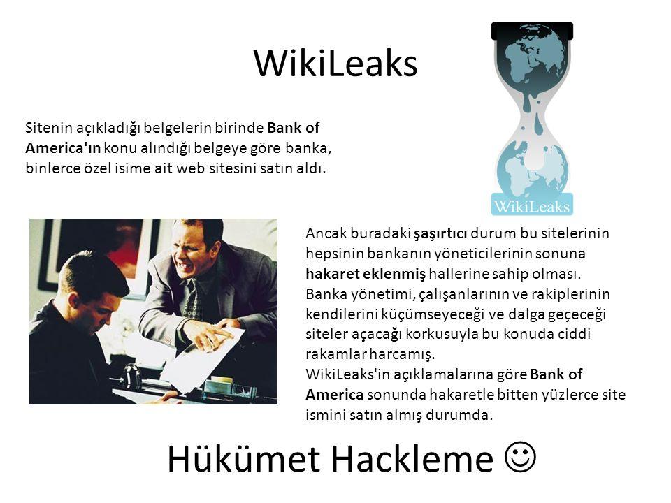 WikiLeaks Sitenin açıkladığı belgelerin birinde Bank of America'ın konu alındığı belgeye göre banka, binlerce özel isime ait web sitesini satın aldı.