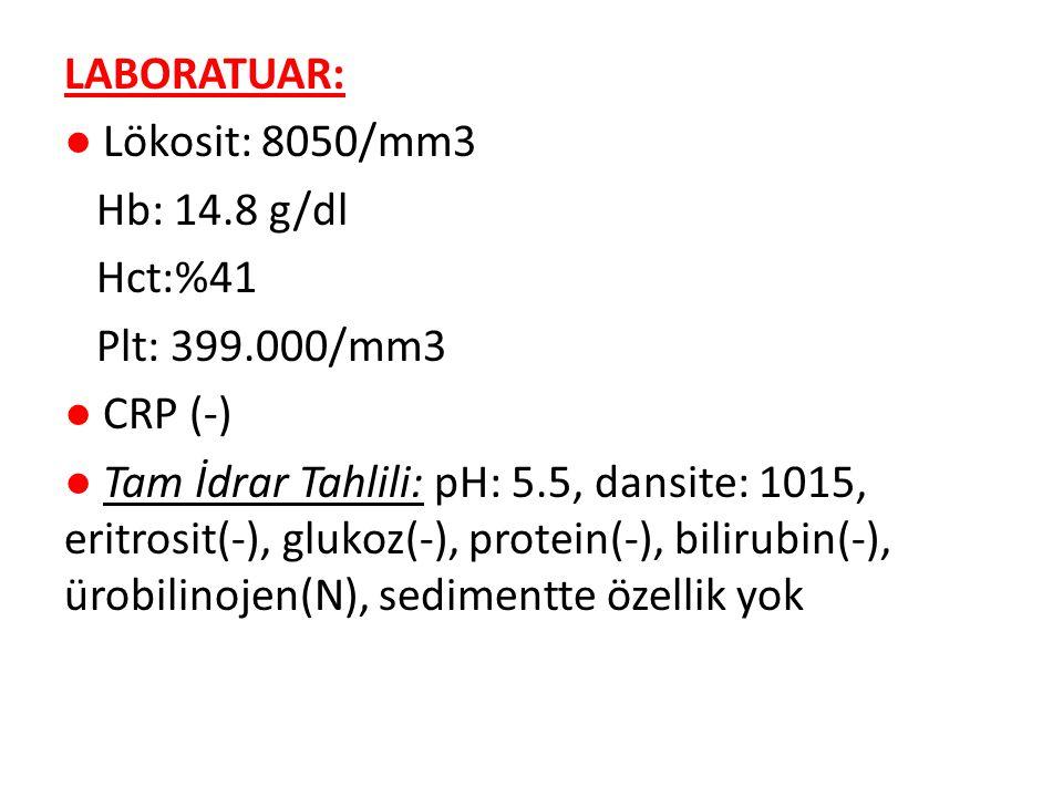 LABORATUAR: ● Lökosit: 8050/mm3 Hb: 14.8 g/dl Hct:%41 Plt: 399.000/mm3 ● CRP (-) ● Tam İdrar Tahlili: pH: 5.5, dansite: 1015, eritrosit(-), glukoz(-),