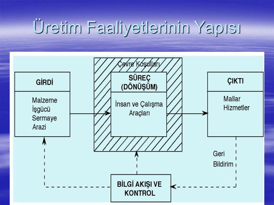 Üretim Faaliyetlerinin Yapısı