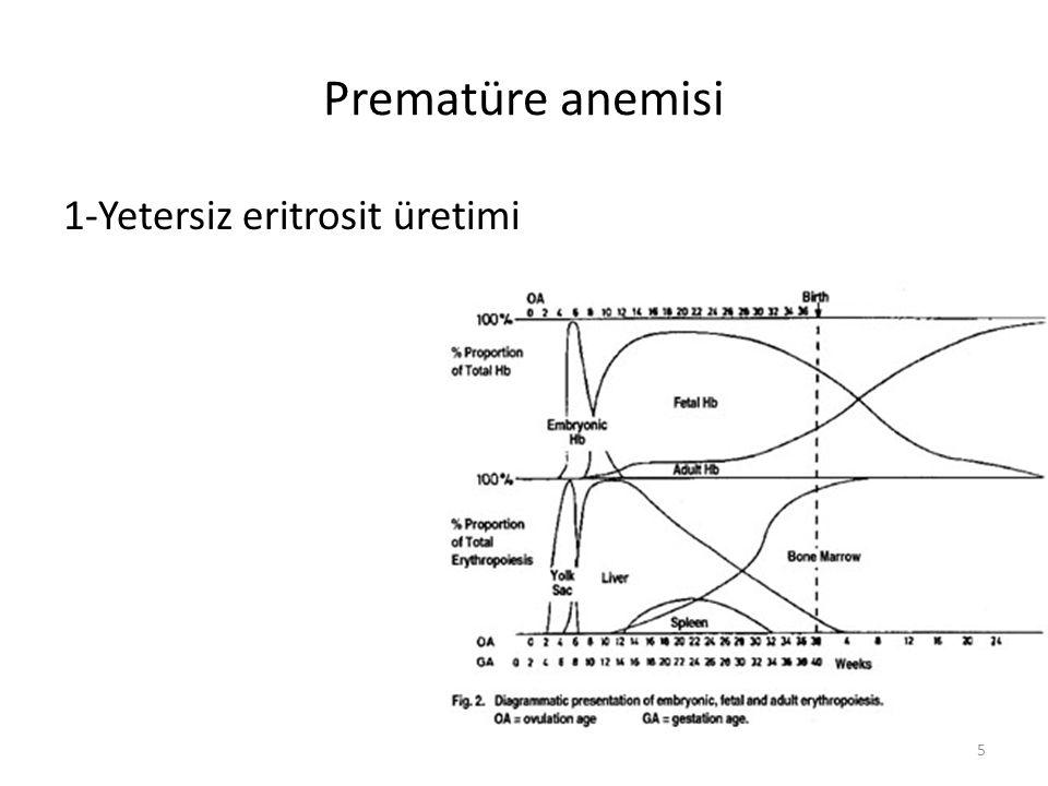 Prematüre anemisi 1-Yetersiz eritrosit üretimi 5