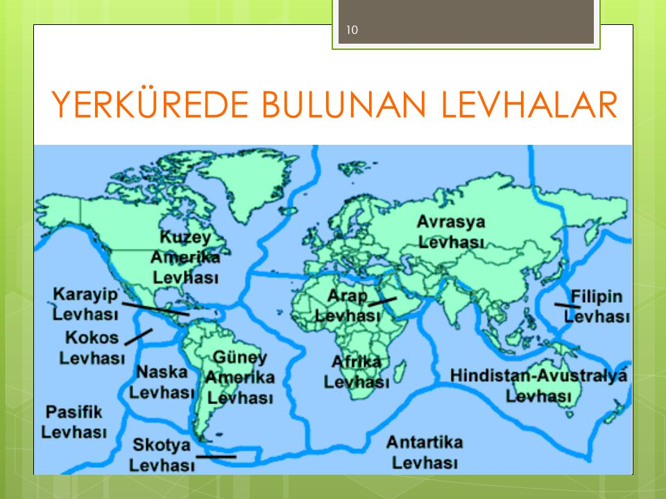 YERKÜREDE BULUNAN LEVHALAR 10