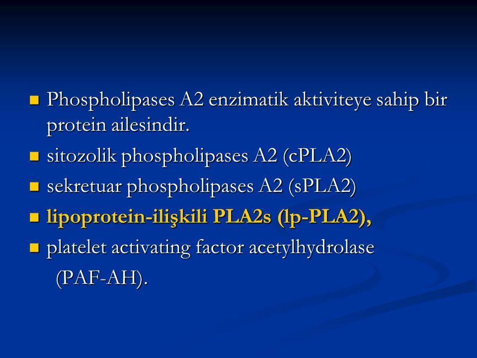 Phospholipases A2 enzimatik aktiviteye sahip bir protein ailesindir. Phospholipases A2 enzimatik aktiviteye sahip bir protein ailesindir. sitozolik ph
