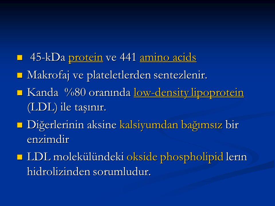 45-kDa protein ve 441 amino acids 45-kDa protein ve 441 amino acidsproteinamino acidsproteinamino acids Makrofaj ve plateletlerden sentezlenir. Makrof