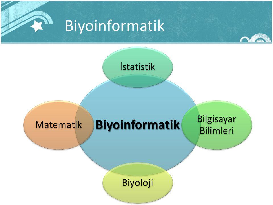 Biyoinformatik Biyoinformatik İstatistik Bilgisayar Bilimleri Biyoloji Matematik