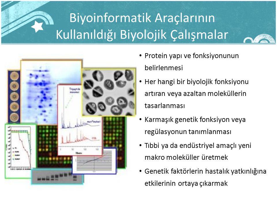 Biyoinformatik Araçlarının Kullanıldığı Biyolojik Çalışmalar Protein yapı ve fonksiyonunun belirlenmesi Her hangi bir biyolojik fonksiyonu artıran vey