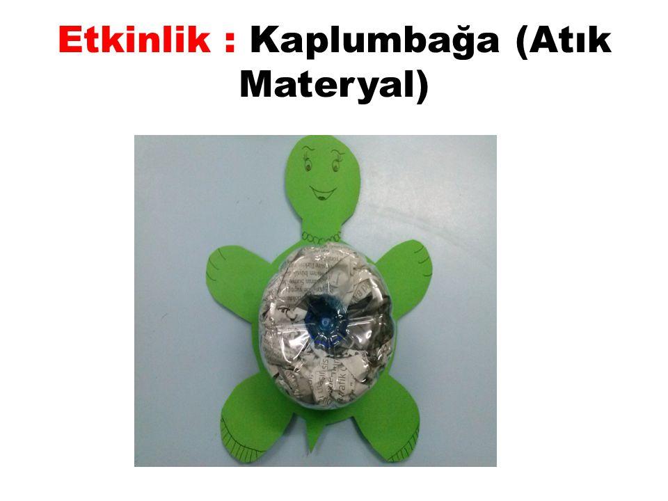 Etkinlik : Kaplumbağa (Atık Materyal)