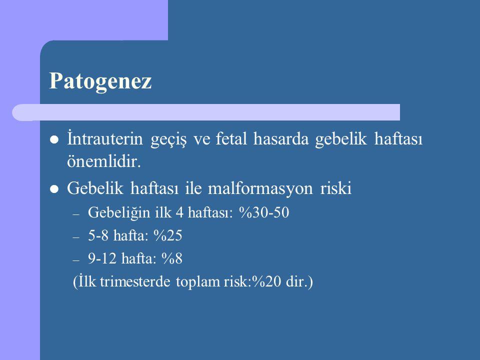 Patogenez İntrauterin geçiş ve fetal hasarda gebelik haftası önemlidir. Gebelik haftası ile malformasyon riski – Gebeliğin ilk 4 haftası: %30-50 – 5-8