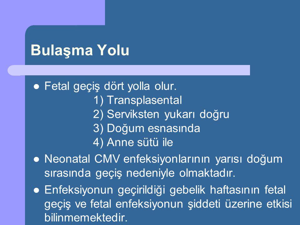 Bulaşma Yolu Fetal geçiş dört yolla olur. 1) Transplasental 2) Serviksten yukarı doğru 3) Doğum esnasında 4) Anne sütü ile Neonatal CMV enfeksiyonları