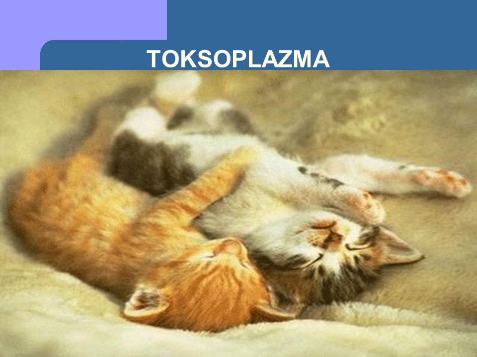 KONJENİTAL TOKSOPLAZMOZİS İntrasellüler bir parazit olan Toksoplazma gondinin intrauterin neden olduğu enfeksiyondur.