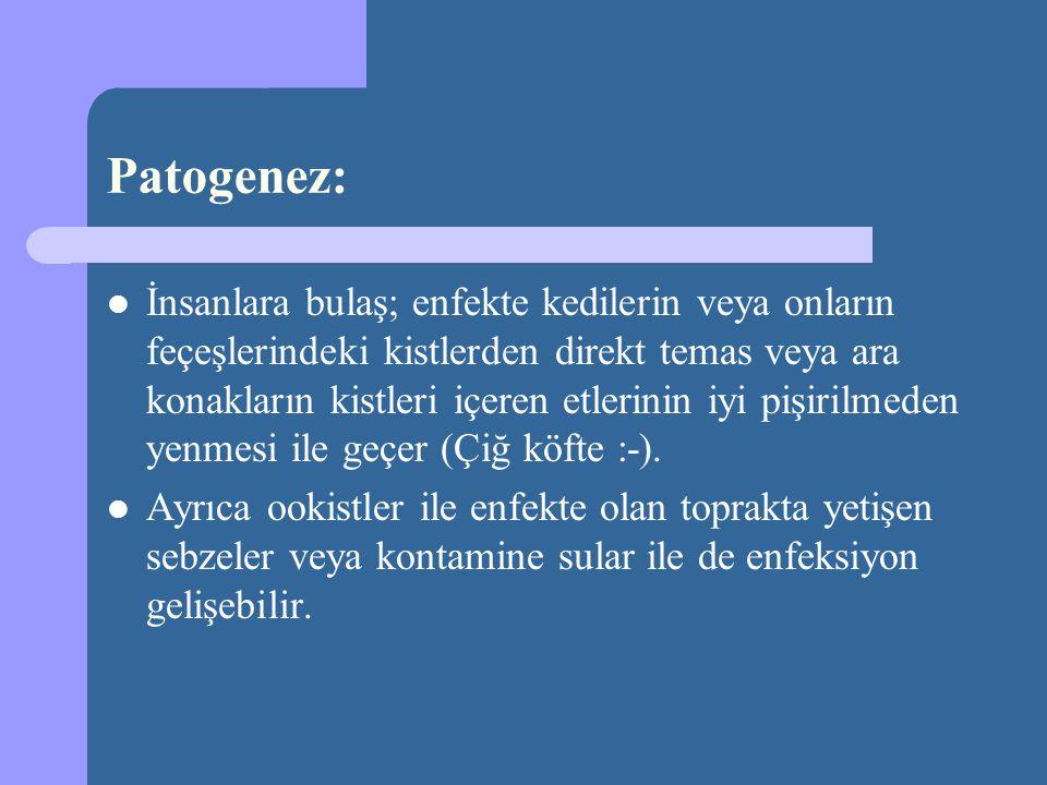 Tanımlama Yeni Doğan Sepsisi Yenidoğan bebekte kan kültüründe mikroorganizma üremesi ile giden klinik hastalık tablosudur.