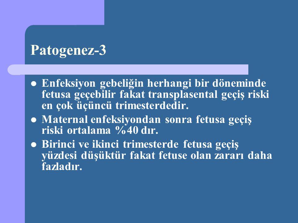 Patogenez-3 Enfeksiyon gebeliğin herhangi bir döneminde fetusa geçebilir fakat transplasental geçiş riski en çok üçüncü trimesterdedir. Maternal enfek