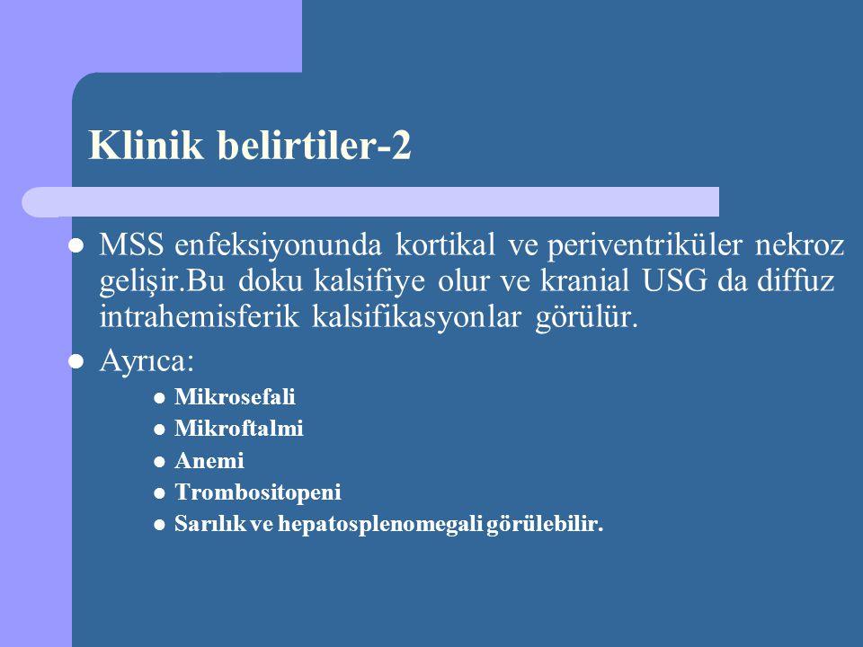 2- Mantarlar – Candida Albicans – Malassezia furfur – Pytrosporon orbiculare 3- Viruslar – Enteroviruslar – CMV ve EBV – Adenoviruslar – Parvovirus B19 – HSV 4- Protozoalar ve diğerleri – T.gondii – T.pallidum – M.tuberculosis Konjenital enfeksiyon Neonatal Sepsis Etkenleri -4