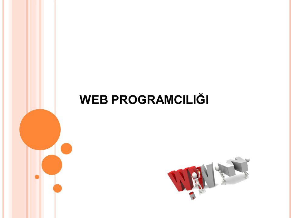 Bilgisayar sisteminin donanım ve yazılım olarak kurulum bilgileriyle birlikte, web sayfası tasarlayan ve programlama dilleri yardımıyla etkileşimli web uygulamaları hazırlayan kişidir.