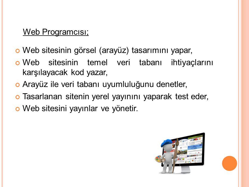 Web programcısı, büro ortamında çalışır ve genellikle tasarım ve görsel unsurlarla uğraşır.