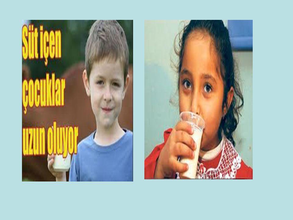  Süt içim zamanının belirlenmesi,  İçilen sütlerin boş kutularının okulda bekletilmeden geri dönüşümünün sağlanması,  Aylık okul icmalinin düzenlenmesi ve il/ilçe Millî Eğitim Müdürlüğüne gönderilmesi, okul icmal  Karşılaşılan diğer sorunların Okul Sütü Komisyonuna iletilmesi,  Okul sütü kolilerinin uygun ortamlarda muhafaza edilmesi ve depolanması,